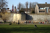Warm day in Maastricht. A short walk along the city wall. 16 March 2017